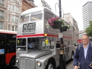 londyn-296