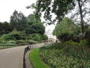 londyn-227
